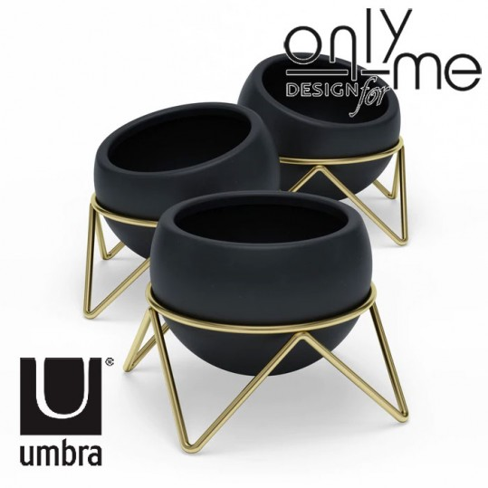 Настолна декорация UMBRA POTSI - комплект